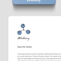 Identity and Brand Design for Winberry
