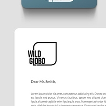 Identity and Brand Design for Wild Globo
