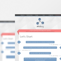 Bespoke Web Design for Winberry