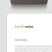 Identity and Brand Design for LemonMint
