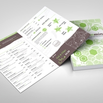 Collateral Design for LemonMint